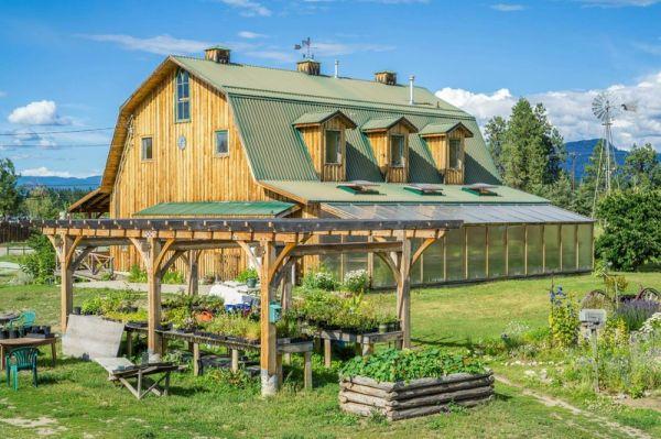 Barn_in_summer(4)