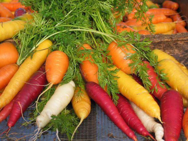 Carrots2C20coloured20on20screen.jpg