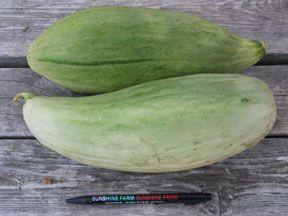 Melon2C20Banana.jpg