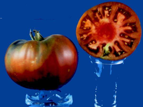 Tomato2C20Black20Seaman.jpg