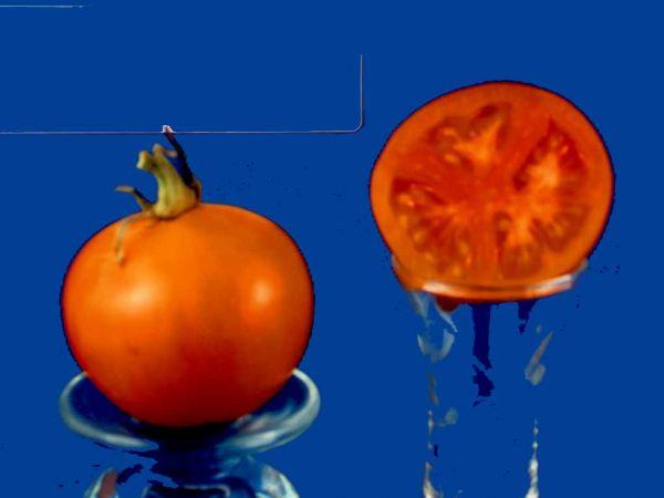 Tomato2C20Flamme.jpg