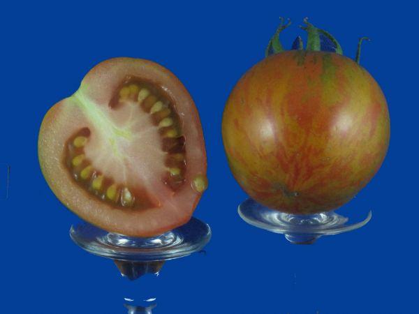 Tomato2C20Red20Zebra.jpg