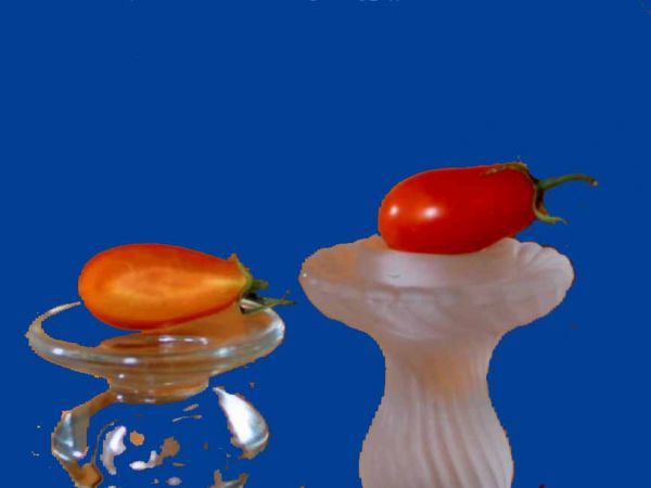 Tomato2C20cherry20roma.jpg