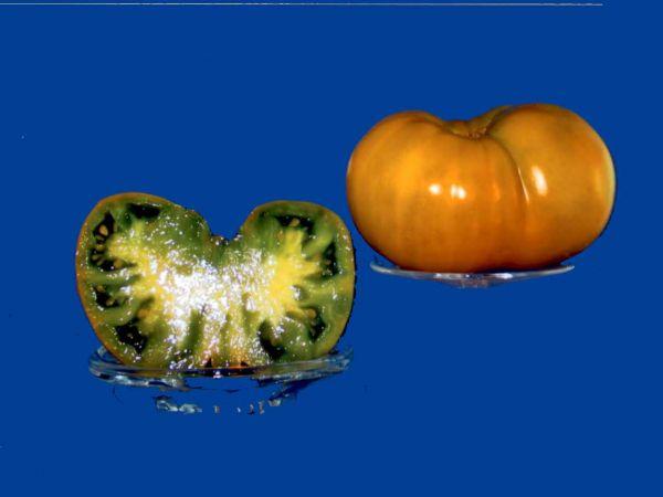 Tomato2C20greenwich.jpg
