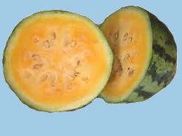 fruit2C20watermelon2C20orange20glo20copy.jpg