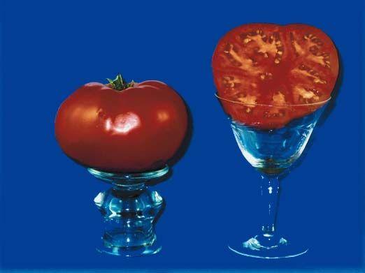 tomato2C20beefsteak20nepal.jpg