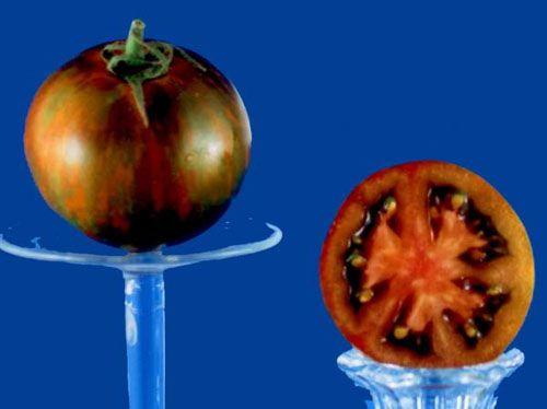 tomato2C20black20zebra1.jpg