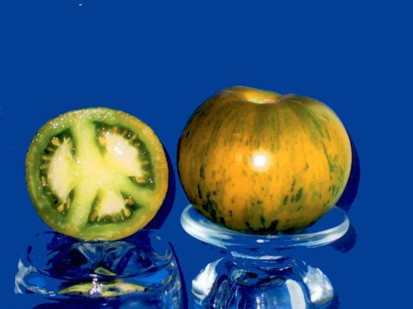 tomato2C20green20zebra28229.jpg