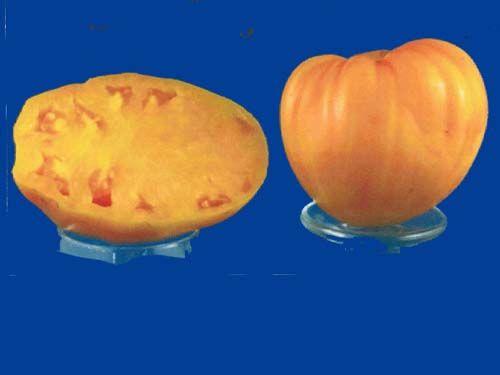 tomato2C20orange20strawberry28229.jpg