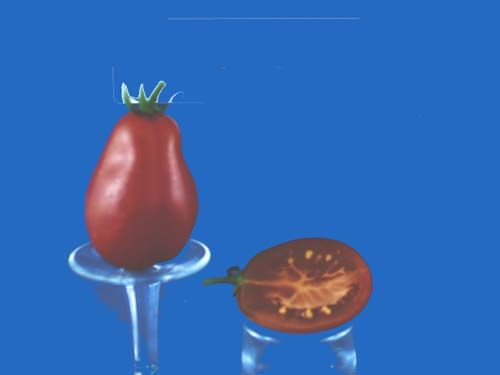tomato2C20pink20pear20cherry.jpg