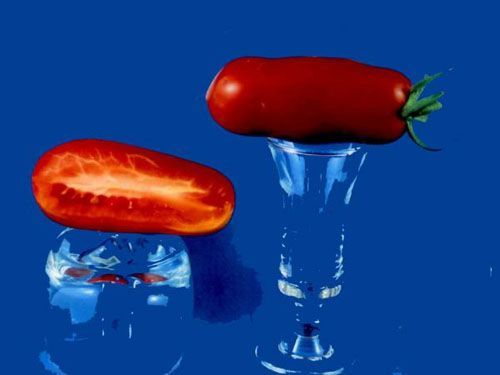 tomato2C20san20marzano28229.jpg