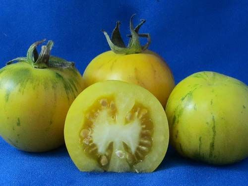 tomato2C20topaz.jpg