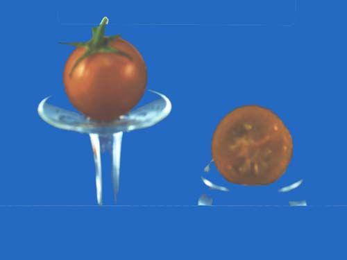 tomato2C20yellow20sweetie.jpg
